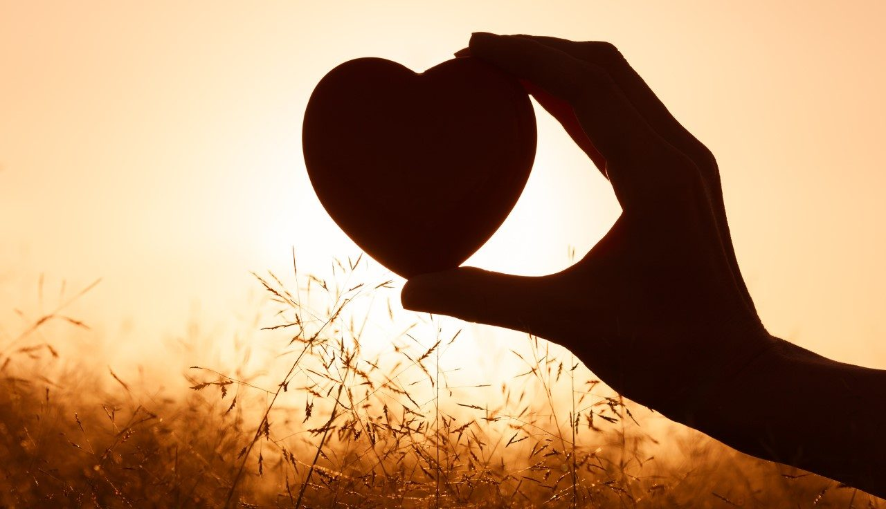 دوره عشق به خویشتن و قانون لیاقت